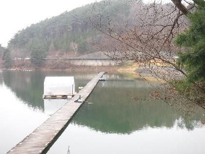 ワカサギ 美鈴 湖 美鈴湖